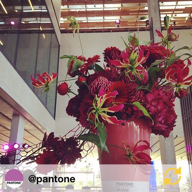 De kleur dit weekend : crimson red RG @pantone: Get fired up and bask in the beauty of this crimson red flower design by @inesnaftali? #FlowerFriday -- Flower pot by @SeraxBelgium #PANTONE #regramapp