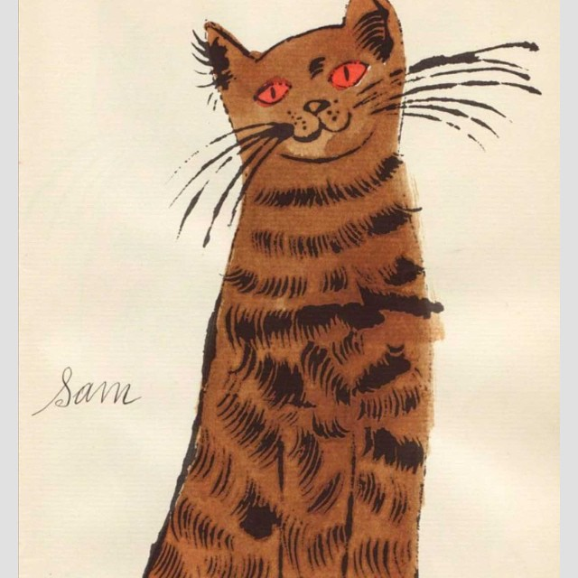 #andywarhol #brown #sam #catstagram #lovecats #redhair