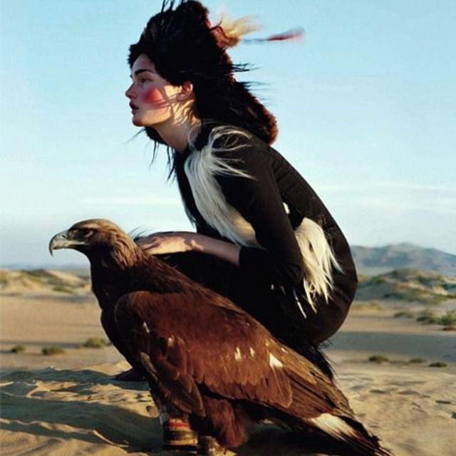#transformation #birdofpray #nature #love