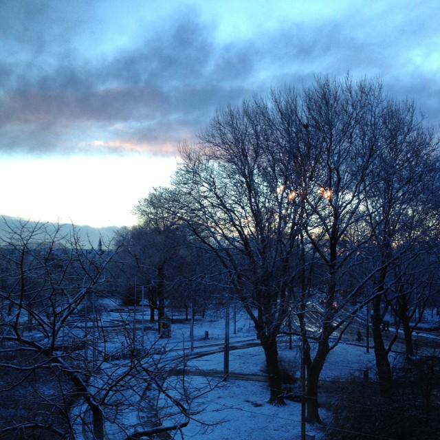 Goodmorning #amsterdam #snow #winter