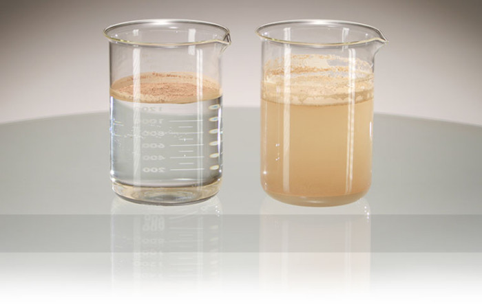 Colorescience Water Test