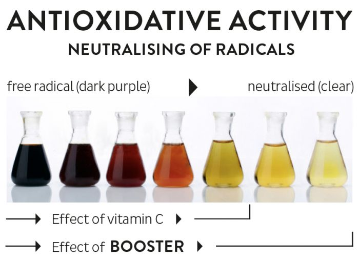 Madara Booster Antioxidative Activity