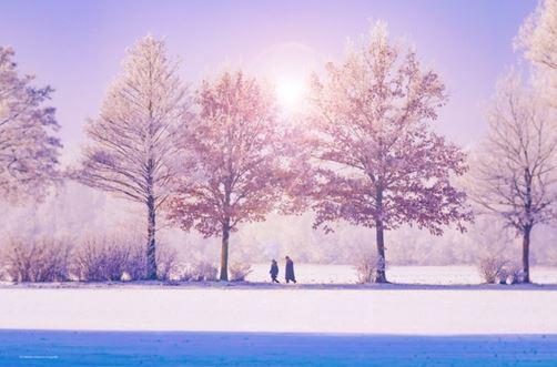 ook winterzon goed voor darmflora