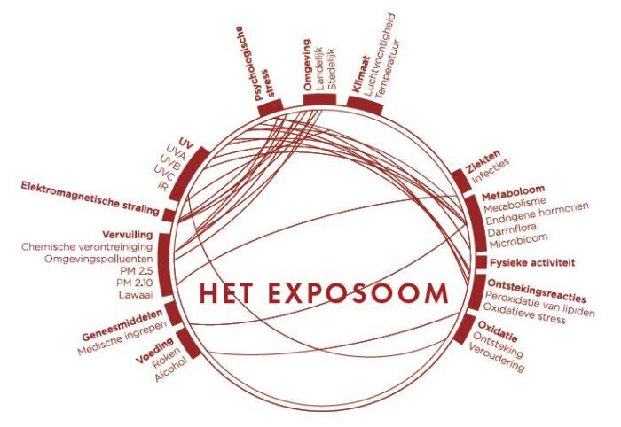 exposoom