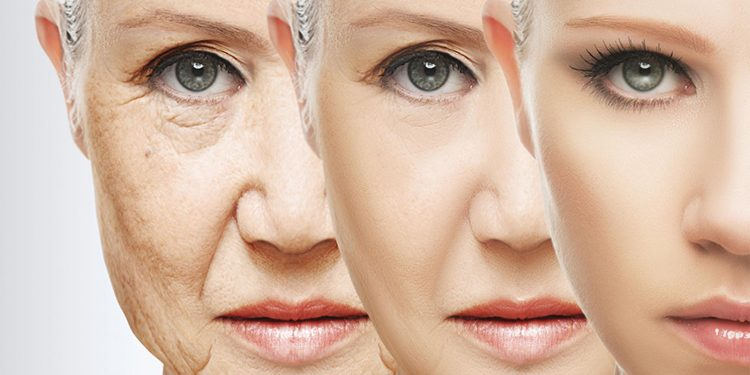 Homepage Anti-Aging