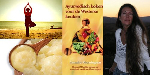 ayurvedisch-koken-rona-review